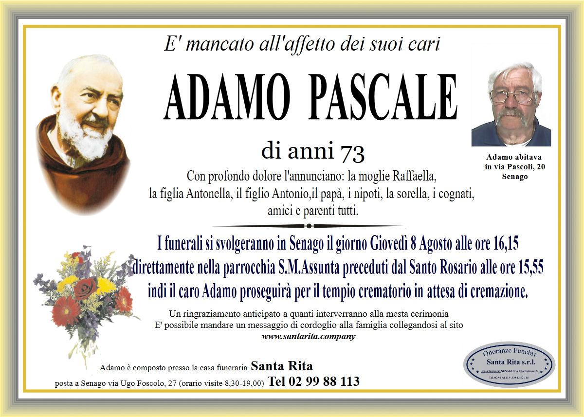 ADAMO PASCALE