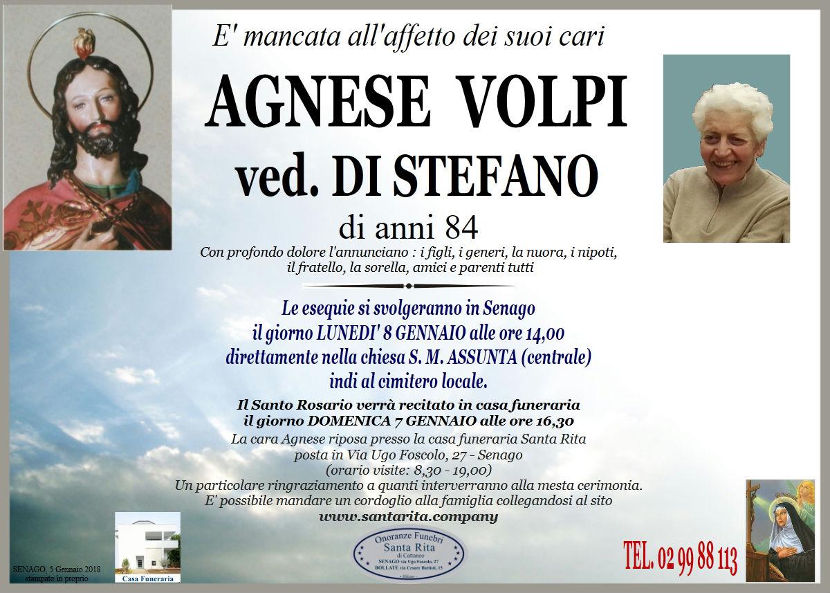 Agnese Volpi