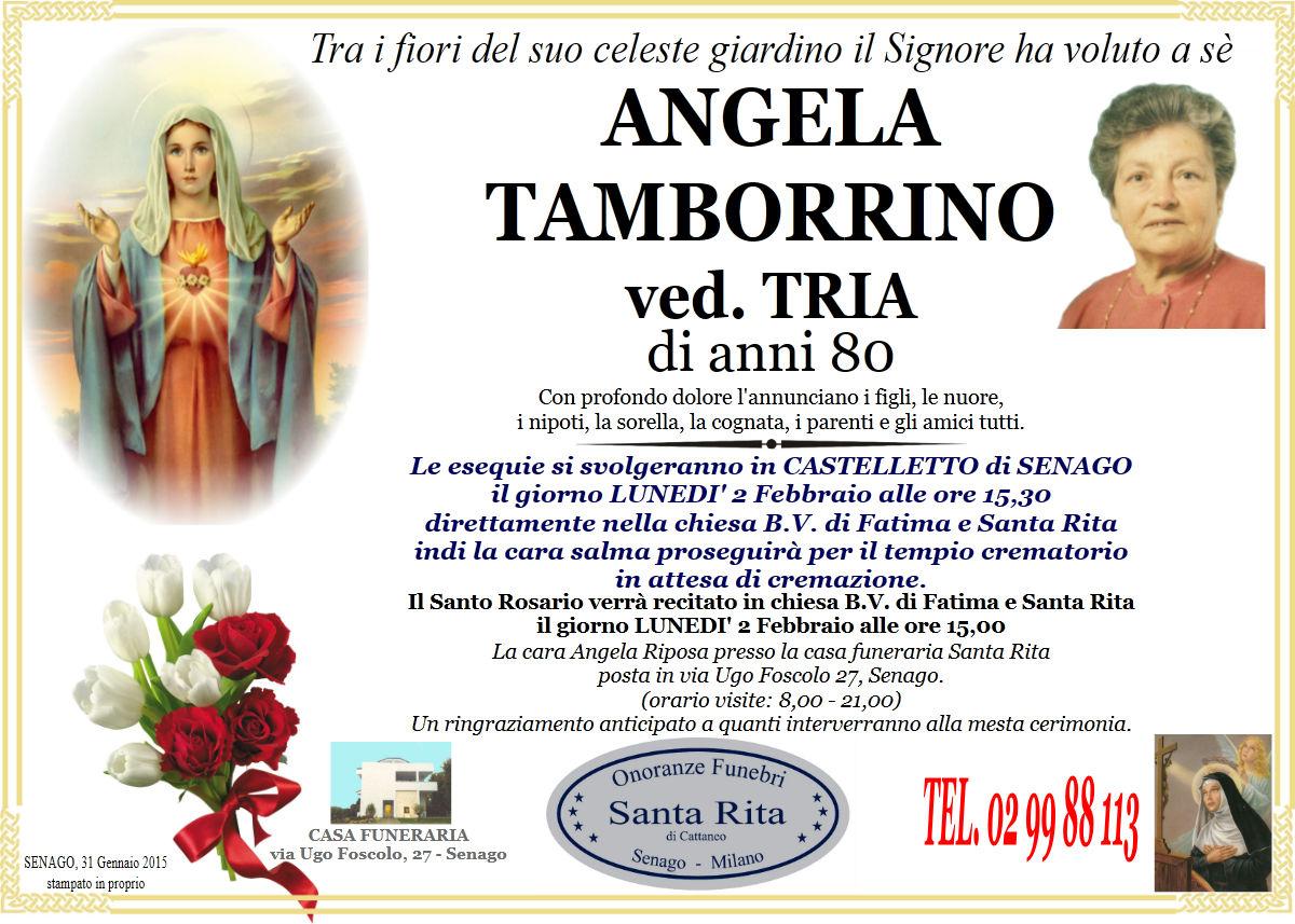 Angela Tamborrino