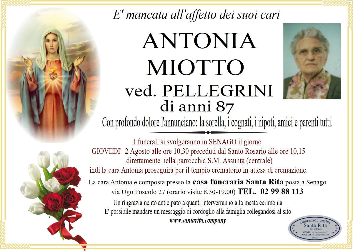 Antonia Miotto
