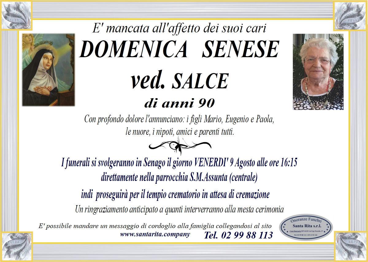 DOMENICA SENESE