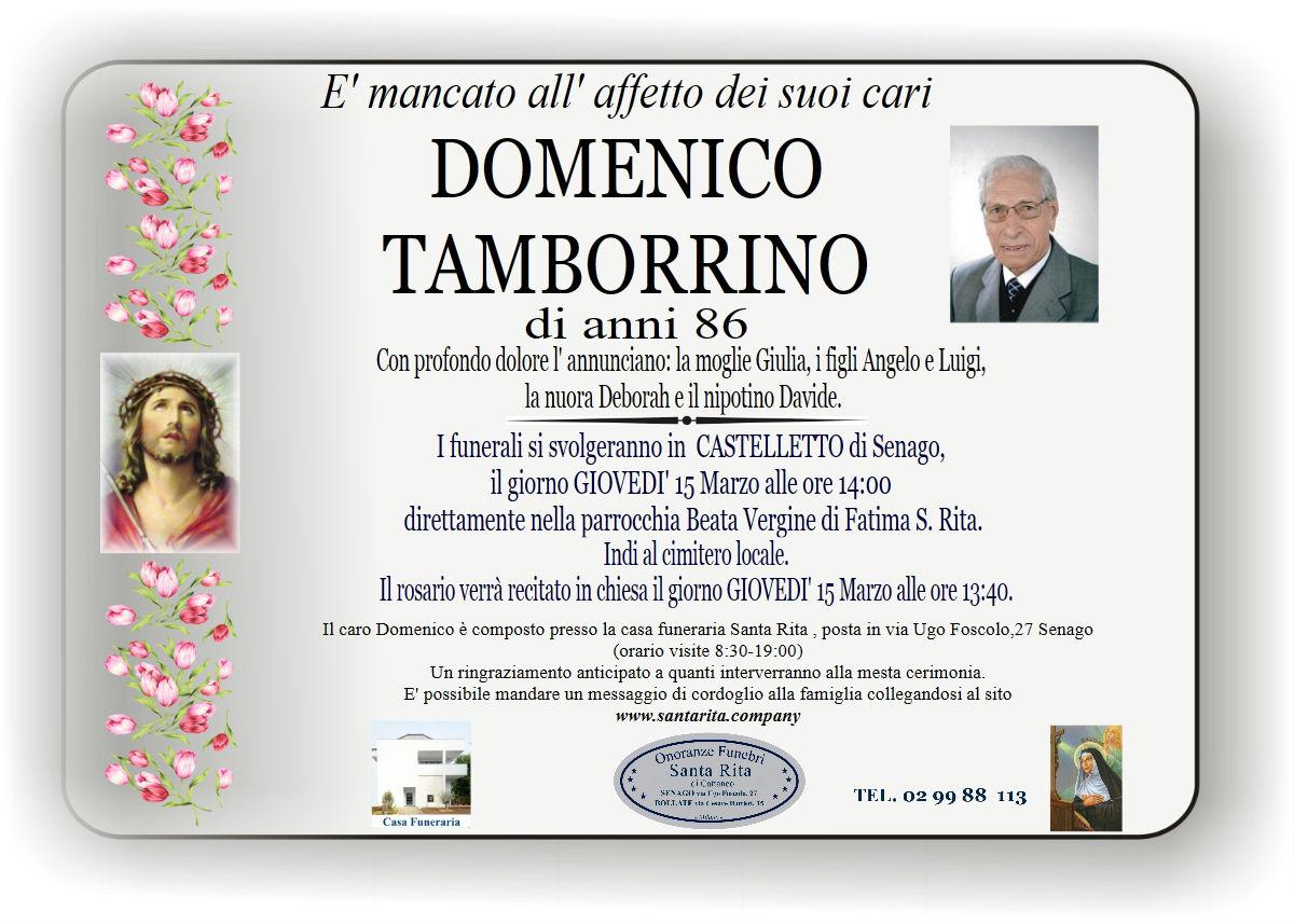 Domenico Tamborrino
