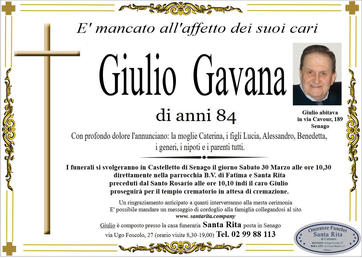 GIULIO GAVANA
