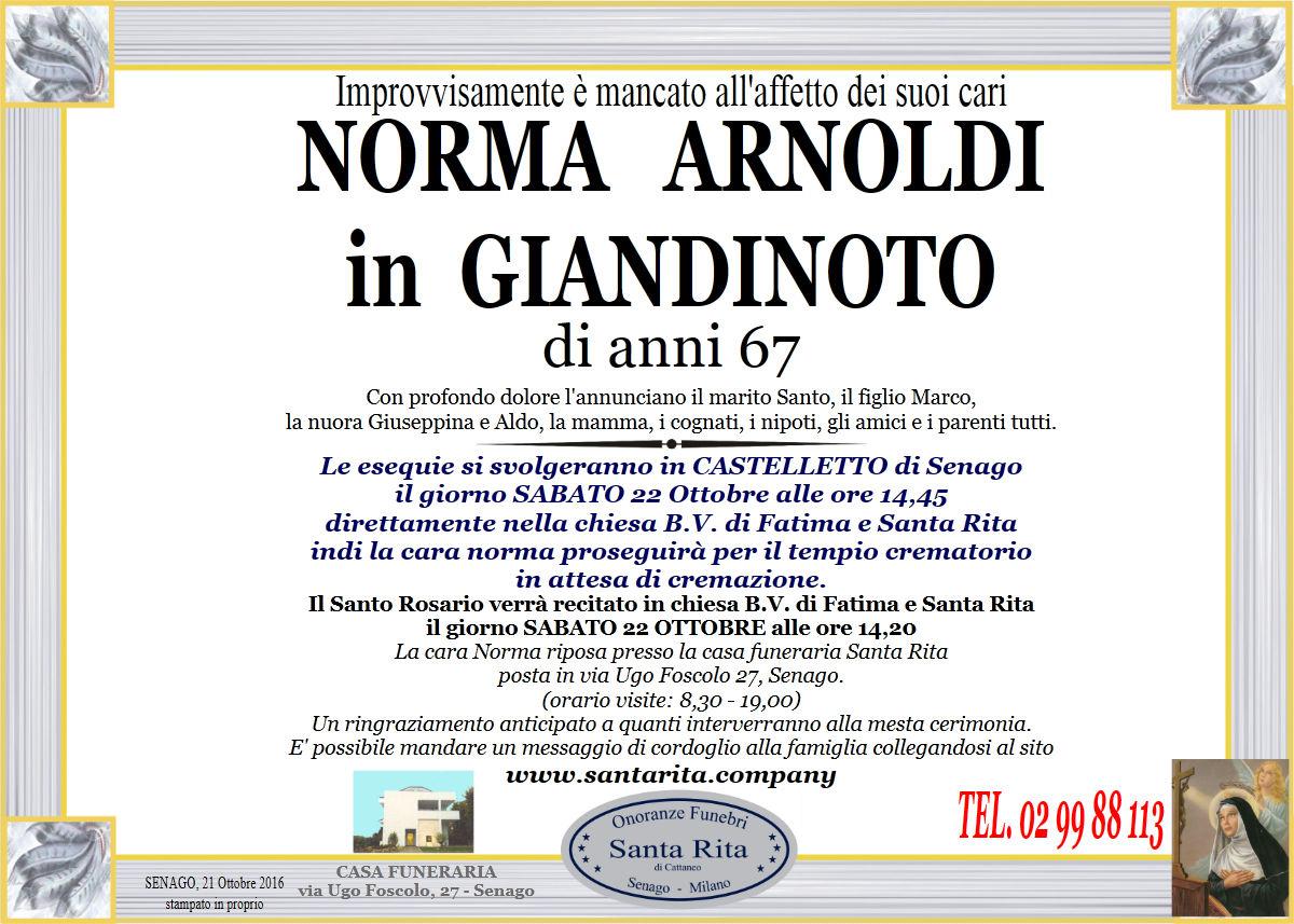 Norma Arnoldi